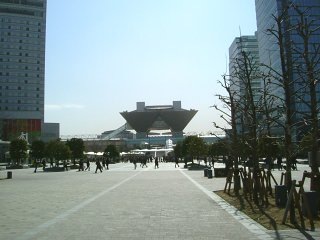 Wf2008w01